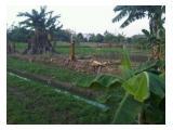 Dijual tanah 3 hektar , dekat stasiun pondok kopi , jakarta timur