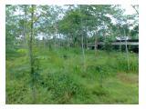 Tanah untuk Perkebunan & Peternakan