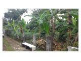 JUAL TANAH 553m2 di LAWANG GINTUNG SUKASARI BOGOR JAWA BARAT