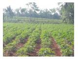 di jual tanah cocok u/ investasi pabrik/gudang/perkebunan/perumahan dsb.