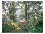 Tanah Perkebunan Anyer Banten