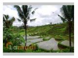 Tanah di Wanagiri, Selemadeg, Tabanan, Bali ( Tanah Investasi ) MURAH