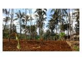 Tanah kosong lokasi bagus di Karang Nunggal Jawa Barat
