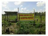 Tanah kaplingan murah