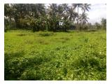 Jual Tanah Perkebunan Murah Luas 6,7 ha Harga Rp. 1.186 M