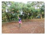 Jual Tanah Kebun Samping Situ Citapen, Purwadadi-Subang