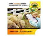 Jual Tanah di Ibukota Bogor Barat - Gratis Kurban Tiap Tahun