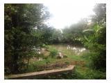 Dijual tanah kebun dan kolam tepi jalan aspal