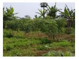 Tanah di jual alternatif taman safari indonesia bogor