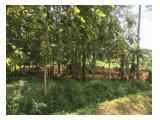 Jual Cepat - Tanah SHM - Simo, Boyolali - Luas 1310 M2