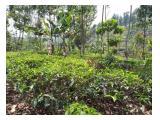 Jual Cepat Tanah MUrah Kota Walini Cikalong Wetan Bandung