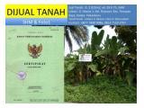 Jual Tanah Pekanbaru Kota, lt 2.925 m2, Jl. Akasia 1, kel. Rejosari, kec. Tenayan Raya, kodya Pekanbaru. Tanah HOOK