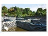 Jual Tanah SHM - Tapos Cimanggis Depok Luas 590 m2