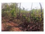 DIJUAL TANAH SUBANG 40 Hektar COCOK UNTUK INDUSTRI, PABRIK, GUDANG, USAHA