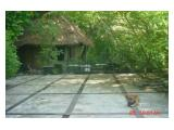Dijual Tanah Konservasi Pribadi Hutan Pantai di Jepara.