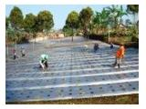 Jual Tanah Kebun + Saung Berfasilitas di Cisarua Sukabumi - SHM
