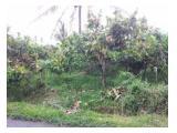 Dijual Kebun Coklat di Payakumbuh Sumatera Barat - SHM 1817 m2